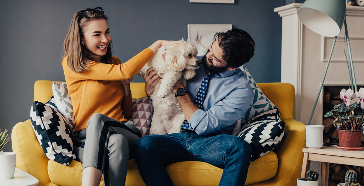 Couple playing with dog on couch